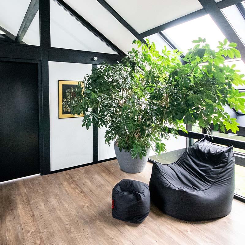 Detmolder Fachwerkhaus – Holzbau 11